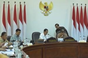 Hemat 21 Juta Dollar/Hari, Jokowi Tekankan Perlunya Percepat Penggunaan Biodiesel