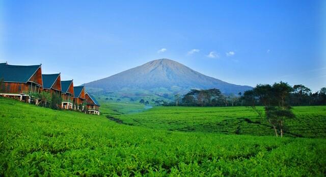 Destinasi Wisata Pagar Alam Layak Dijual ke Dunia Internasional