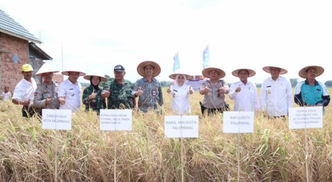 Pemkot Palembang Larang Keras Lahan Pertanian jadi Perumahan