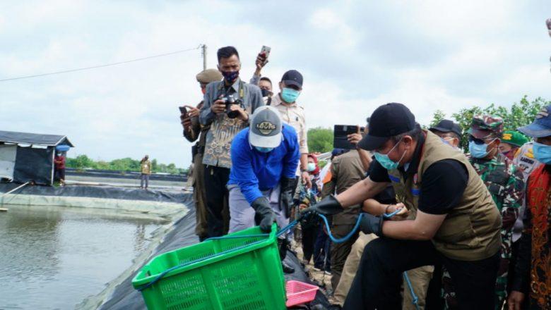 HD Salurkan Listrik untuk Petambak di Perairan OKI
