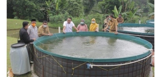 Komisi II Dorong Provinsi Jabar Jadi Penghasil Bibit dan Benih Ikan Terbaik di Indonesia